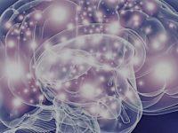 Neurochirurgia-Microchirurgia